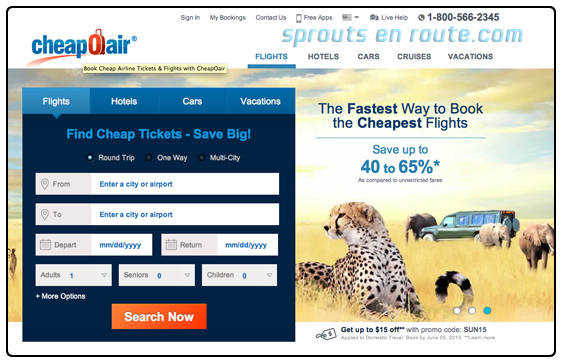 Https Www Consumeraffairs Com Travel Car Rental Html