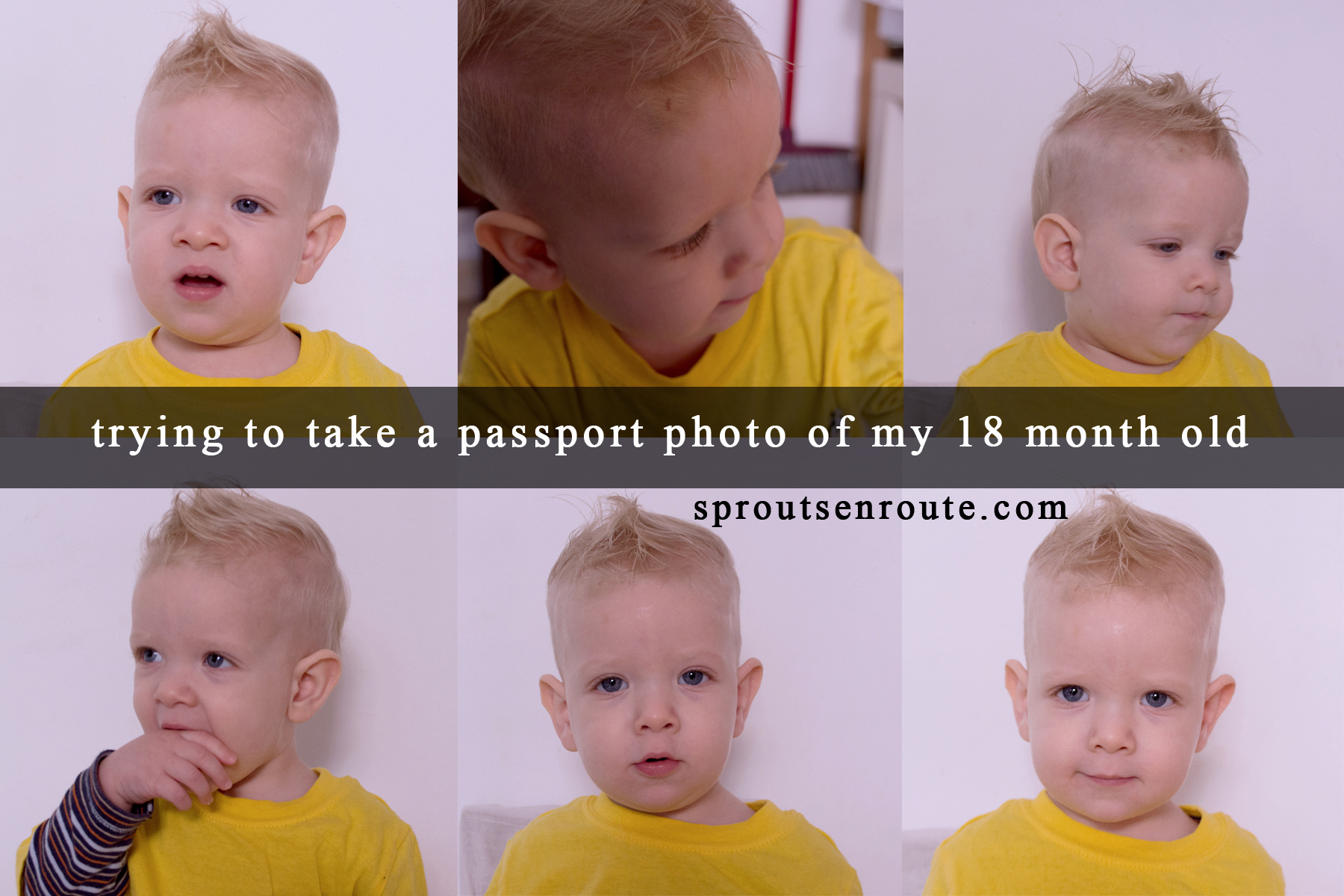 passport photo toddler 18 month old copy