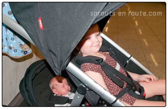 Phil Teds Verve The Ultimate Double Stroller Sprouts En Route